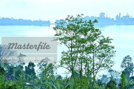 Indonesia, Bali, Bratan lake, fisherman