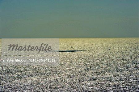 Indonesia, Bali, Indian ocean