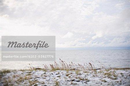 Snow on a beach, Gotland, Sweden.