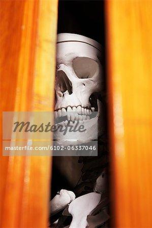 Skeleton in closet, close-up