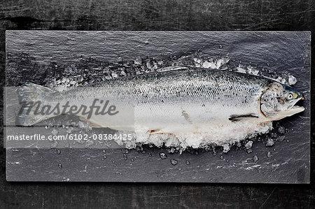 Fish on slate board