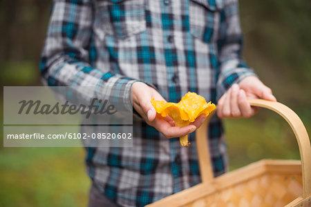Child holding mushroom