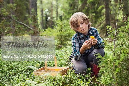 Boy picking up mushroom in forest
