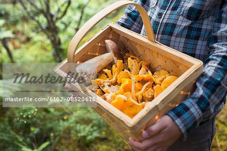 Child holding basket full of mushrooms