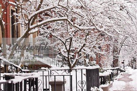 Buildings along a snow covered street, Commonwealth Avenue, Boston, Massachusetts, USA