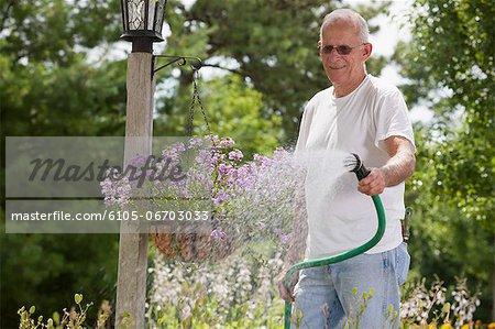Senior man watering viburnum flowers in lamp post flower basket