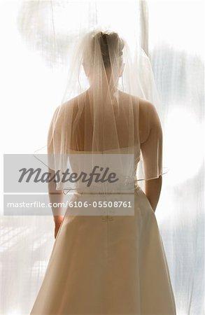 Bride standing in sunlight, rear view