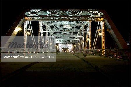 A bridge illuminated at night.