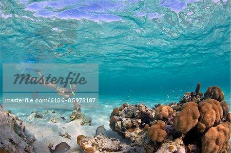 Belize Lifestyle