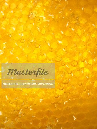 Honey close-up