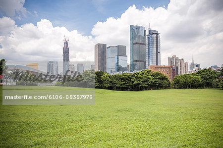 Shenzhen Skyline beside Meadow