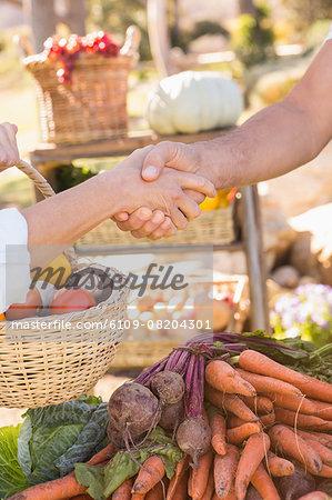 Handshake between a customer and a farmer