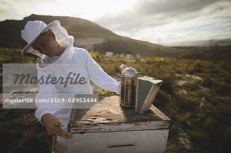 Female beekeeper examining beehive at apiary