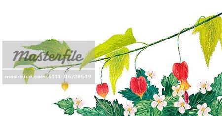 Heart Bleeding Flowers On White Background