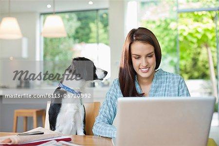 Dog watching woman use laptop