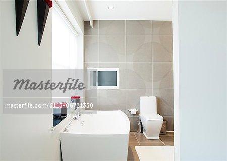 Toilet and sink in modern bathroom