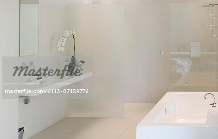 Orchid, sink and bathtub in modern bathroom