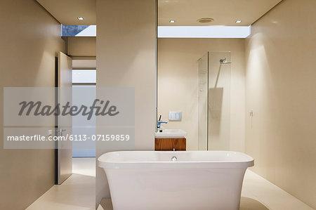 Bathtub, sink and shower in modern bathroom