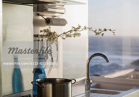 Flowers in bottle on kitchen counter overlooking ocean