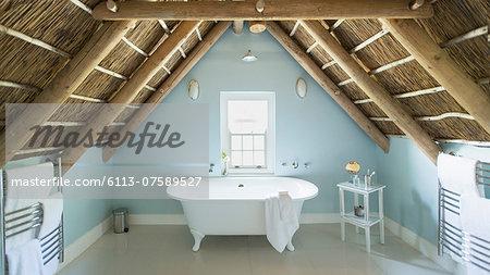 Luxury attic bathroom