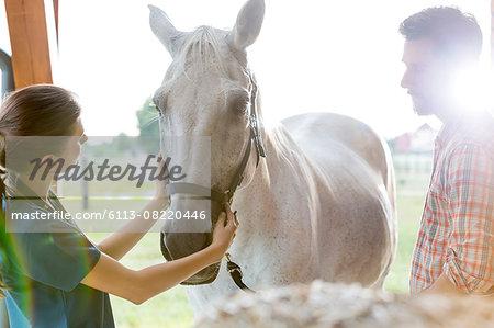 Veterinarian examining horse