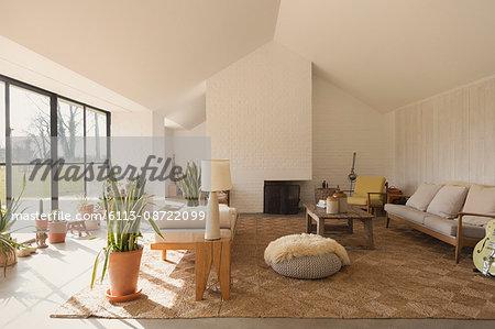 Home showcase sunny living room