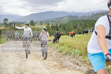 Friends mountain biking on rural dirt road along cow pasture