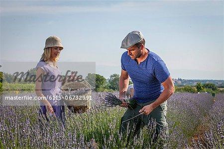 Couple In Lavender Field, Croatia, Dalmatia, Europe