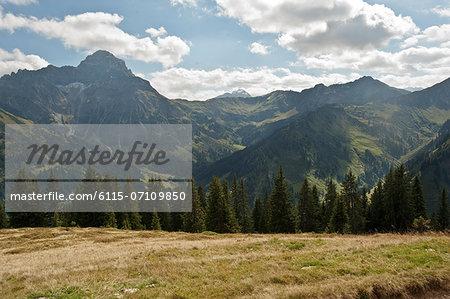 Open pasture in front of mountain range, Kleinwalsertal, Vorarlberg, Austria