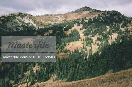 Fall in the North Cascades, near Harts Pass, Pasayten Wilderness, Washington.