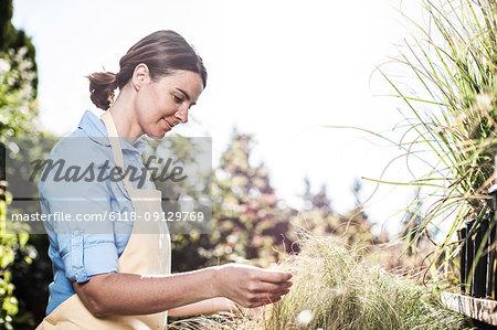 Young Caucasian woman employee of a garden centre nursery.