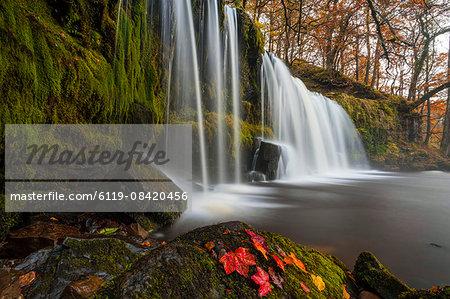 Sqwd Ddwli Waterfall, near Pontneddfechan, Afon Pyrddin, Powys, Brecon Beacons National Park, Wales, United Kingdom, Europe