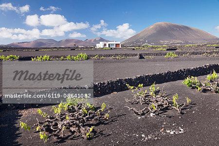 Finca, wine growing district La Geria, Lanzarote, Canary Islands, Spain, Atlantic, Europe