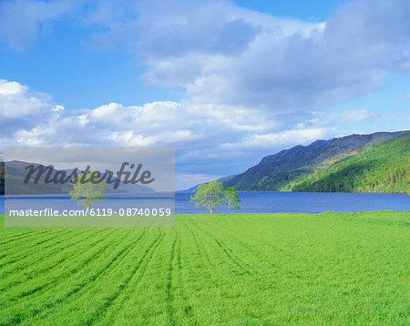 Loch Ness from the western end, Highlands Region, Scotland, United Kingdom, Europe