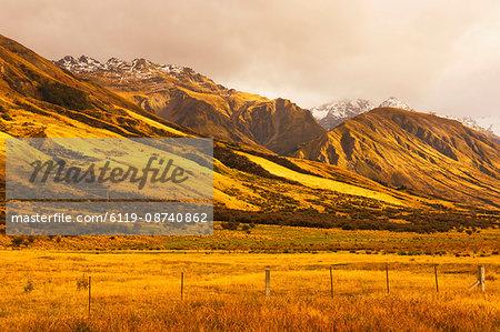 Pasture and Ben Ohau Range, Canterbury, South Island, New Zealand, Pacific