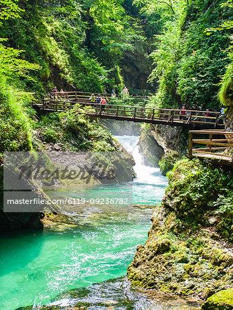 Radovna River flowing through Vintgar Gorge, near Bled, Slovenia, Europe