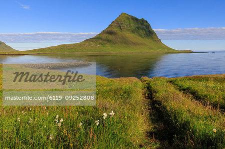 Field by Kirkjufell mountain in Grundarfjordur, Iceland, Europe
