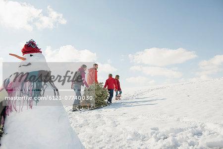 Family pulling spruce on sledge, Bavaria, Germany