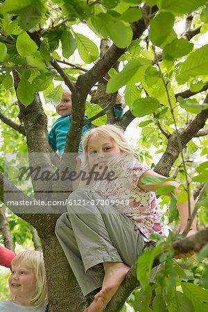 Three small kids in garden sitting in cherry tree