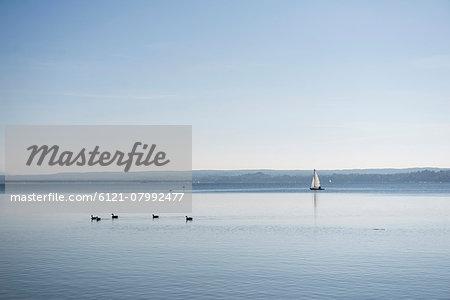Yacht horizon sunrise blue distant seascape