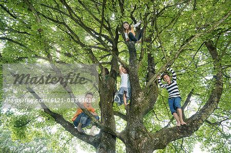 Children climbing on tree, Munich, Bavaria, Germany