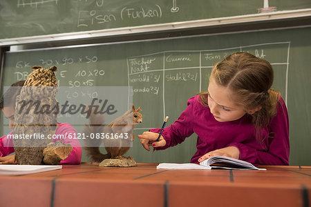 Schoolgirls writing notes about stuffed animals in biology class, Fürstenfeldbruck, Bavaria, Germany