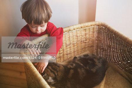 Boy petting cat in basket