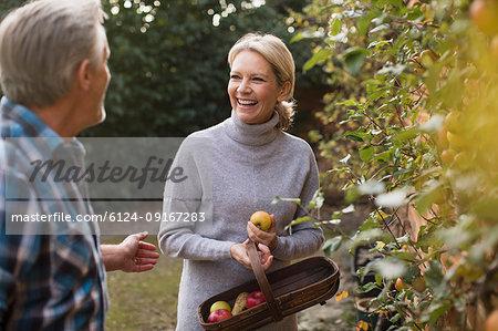 Happy mature couple harvesting apples in garden