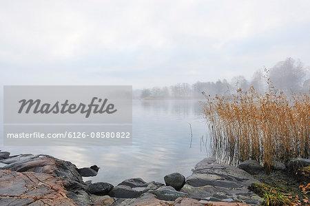 Sweden, Uppland, Lidingo, Fog over lake