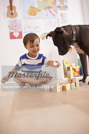 Should I build you a doggie house?