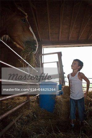 Boy feeding horse in barn