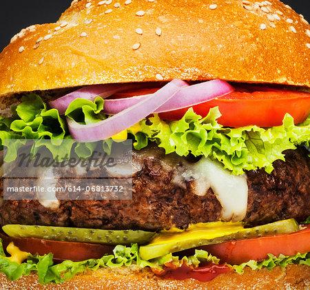 Burger full frame