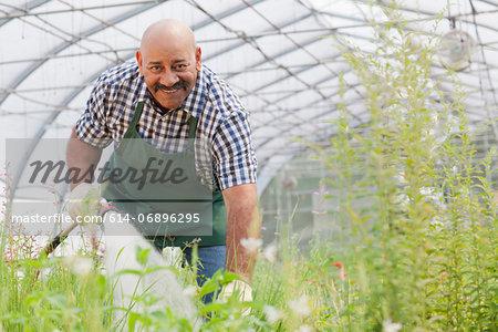 Mature man watering plants in garden centre, portrait