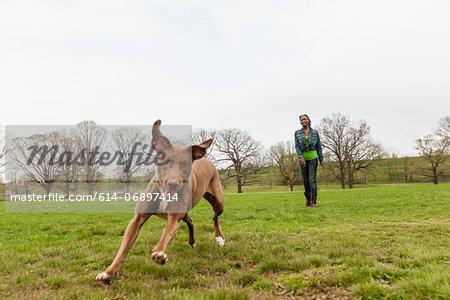 Dog running across grass